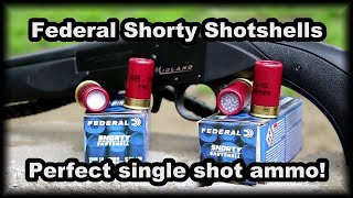 Federal Shorty Shells Perfect single shot ammo
