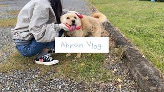 [VLOG]Ahran Vlog./할머니팔순/코바늘/비즈…