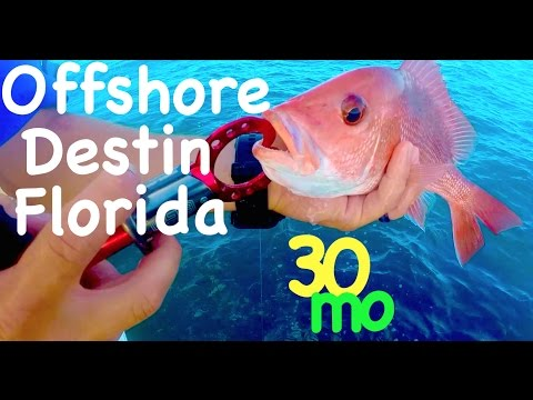 OFFSHORE FISHING - Snapper in Destin Florida - Boat Fishing