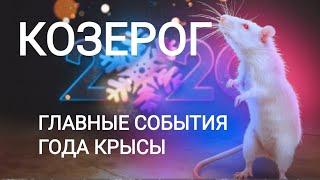 КОЗЕРОГ. Главные события года КРЫСЫ (25.01.2020 - 11.02.2021). Точный прогноз.