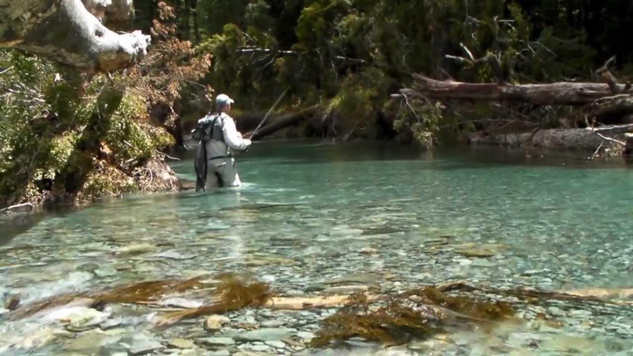Fly Fishing South Island New Zealand Youtube