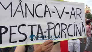 ZiarulClujean - Protest Cluj, 11 august 2018