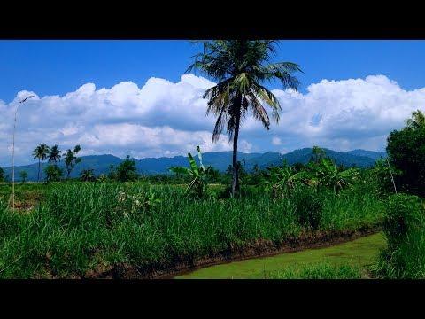 The Heritage Rural Farmland Terrace Landscape North Bali