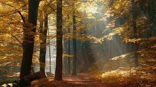 KEBANGKITAN SPIRITUAL -- Bersiaplah untuk perubahan-perubahan di Bumi Mp3
