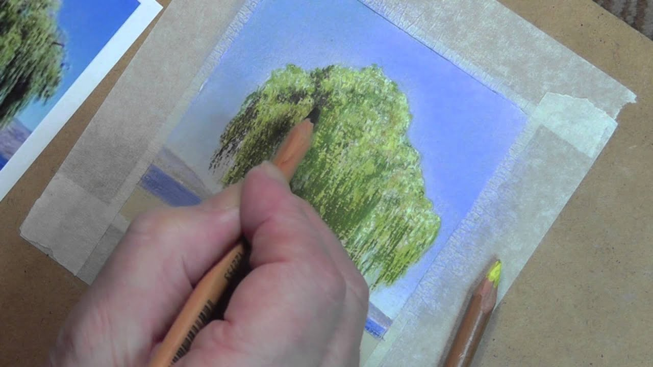 Draw this Willow Tree using Pastel Pencils - YouTube