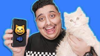 تكلمت مع القطوه باستخدام مترجم قطط 😺!! ( شوفوا ايش قالت لي 😨!! )