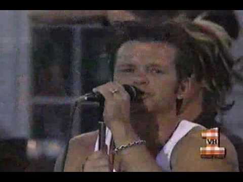 John Mellencamp I Saw You First Big Backyard BBQ