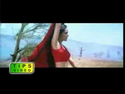 Maya Hai Sab Maya  ASF MUNIR JUTT