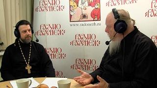 Радио «Радонеж». Протоиерей Димитрий Смирнов. Видеозапись прямого эфира от 2017.01.21