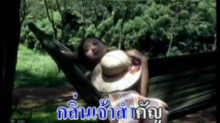 Video Duang jam pa, Lao song download MP3, 3GP, MP4, WEBM, AVI, FLV Mei 2018