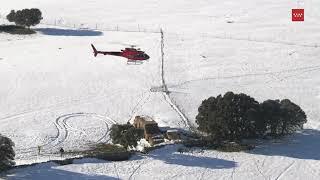Madrid activa la 'Operación Tulipán' para alimentar desde helicóptero a vacas aisladas