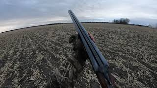 Bad Company Waterfowl 2021: Taking What I Can Get - 10 Gauge Double Barrel Ground Pound