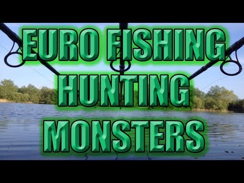 Euro Fishing | Live Stream, looking for Some Boss Fish