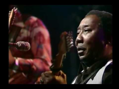 Muddy Waters Molde Jazz Festival Norway 1977