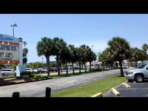 Miami Dade County Police Harassment - Miami SeaQuarium Protest 6/8/2014