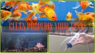 How to properly clean your 30g goldfish aquarium! | Aquatix Tech Life