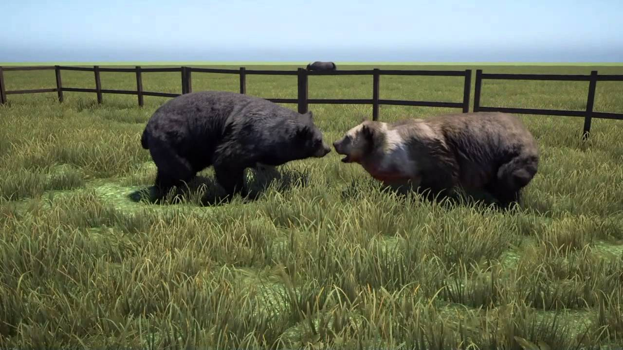 Far Cry 4 Animal Fights
