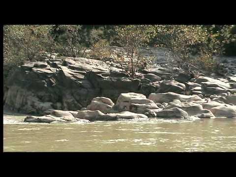 Suiseki pietre di fiume youtube for Pietre di fiume