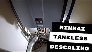 Rinnai Tankless Water Heater Descaled
