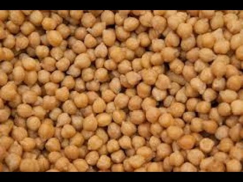 Chickpea  training and tips on seeds