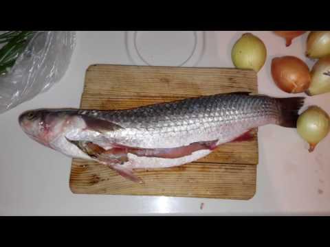 рыбацкая шкара