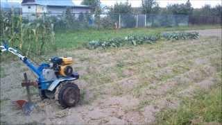 Копка картошки мотоблоком(, 2013-09-14T16:30:40.000Z)