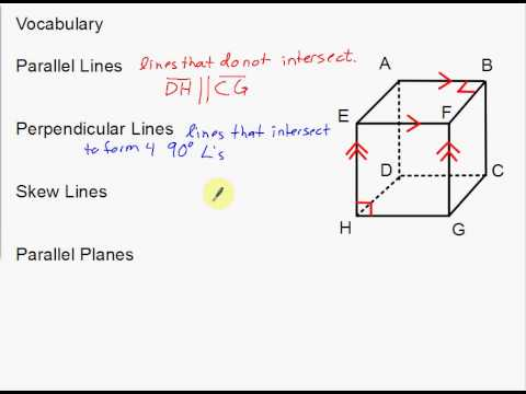 vocabulary parallel perpendicular and skew lines and