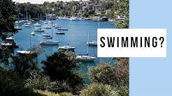 Would You Swim At Cremorne Point Circuit Walk?