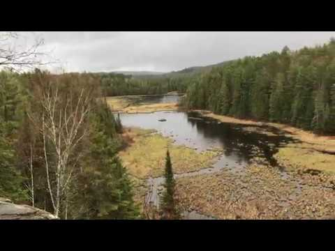 Beaver Pond Trail Lookout