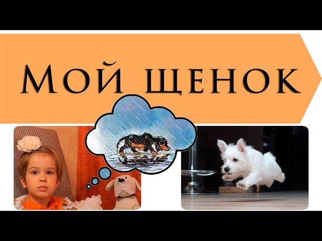 Изображение предпросмотра прочтения – ИльяПаламарчук читает произведение «Мой щенок» С.В.Михалкова