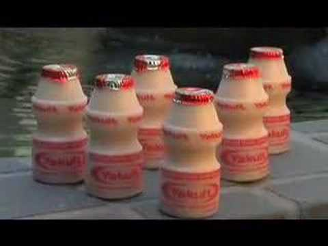 Yakult: Probiotics and Your Health