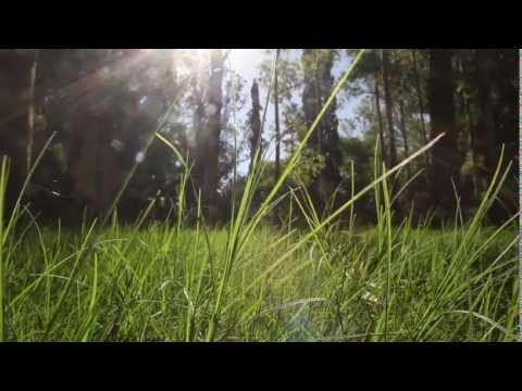 Farm Land Uruguay
