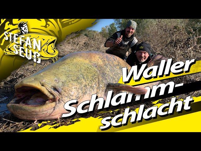 WELSANGELN mit Stefan Seuß am FLUSS | WALLER-Schlammschlacht und Freestyle-Montage in den Hecken