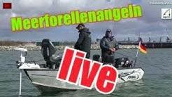 Meerforellenangeln vor Rügen! live Angeln an der Ostsee