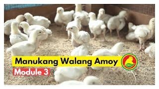 proavian feeds manukang walang amoy at iwas langaw module 3