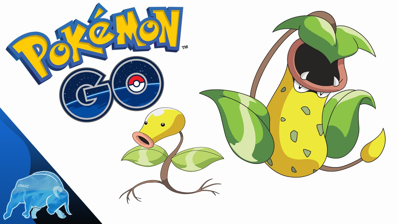 Pokémon GO Bellsprout Evolves Into Weepinbell/Victreebel ...
