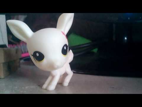 LPS Shorts: Clean your room!