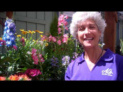 Grow your own Bouquet