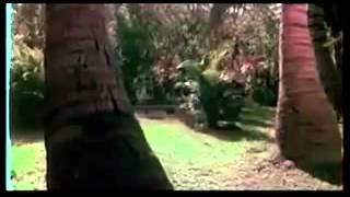 Veenapoove Kumaranasante Evergreen Malayalam Song