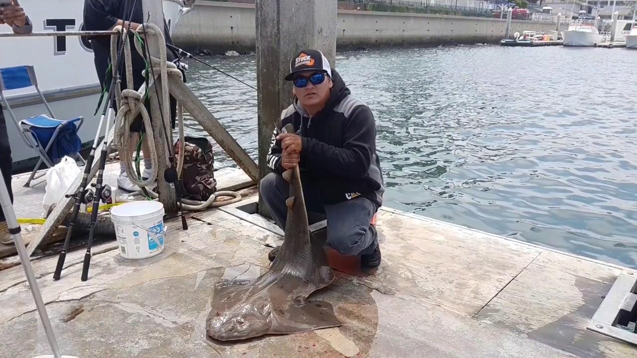 Marina del rey dock fishing feliz 4 de julio youtube for Marina del rey fishing report