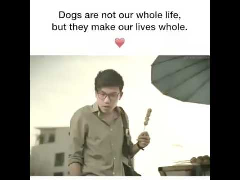 Dog are not our whole life  but they  make our lives whole....