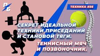 постер к видео Секрет идеальной техники приседаний и становой тяги. Теннисный мяч и позвоночник. Техника #56