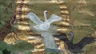 Kuşların Şarkısı - 10. Bölüm Büyük Buluşma