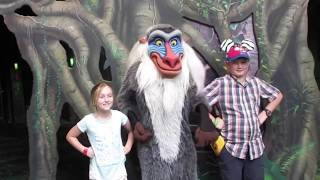 MEETING RAFIKI AT DISNEY'S ANIMAL KINGDOM PARK
