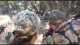 Tejon Ranch Pig Hunting