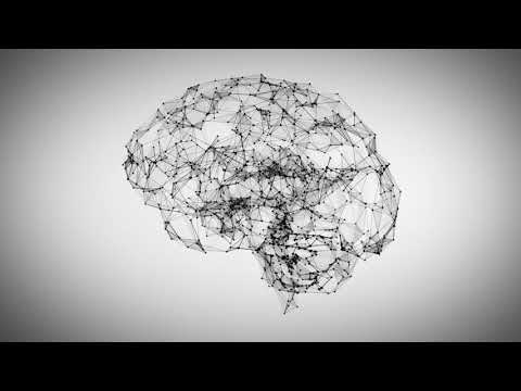 Brain Neural Connections mp4