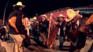 Mono Blanco - El Chuchumbé - Fandango en Tlacotalpan