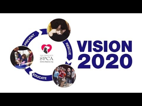 SF SPCA Vision 2020