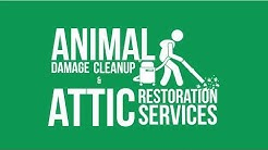 Animal Remover LLC - Animal Removal and Control Cincinnati, OH