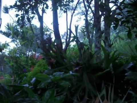 Sunrise in Cayey, amanecer cayeyano